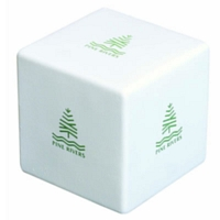 Big Cube Qty 100 Price Includes One Colour One Position Print